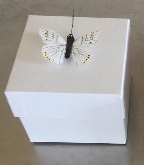 Small Release Box